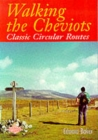 Walking the Cheviots : Classic Circular Routes - Book