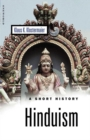 Hinduism : A Short History - Book