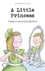 A Little Princess - Book