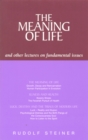 The Meaning of Life and Other Lectures on Fundamental Issues - eBook