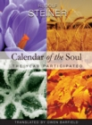 Calendar of the Soul : The Year Participated - eBook