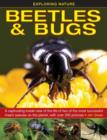 Exploring Nature: Beetles & Bugs - Book