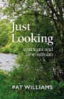 Just Looking : upstream and downstream - Book