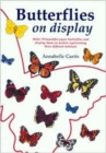 Butterflies on Display - Book