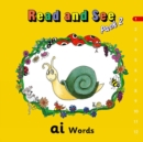 Jolly Phonics Read and See, Pack 2 : In Precursive Letters (British English edition) - Book