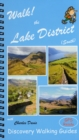 Walk! the Lake District South - Book