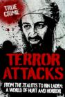 Terror Attacks : From the Zealots to Bin Laden: A World of Hurt and Horror - eBook