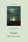 Twilight and Moonbeam Alley - eBook