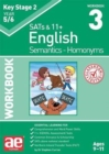 KS2 Semantics Year 5/6 Workbook 3 - Homonyms - Book