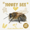 Life Cycle of a Honey Bee - Book