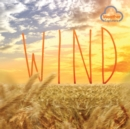 Weather Explorers: Wind - Book
