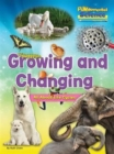 Fundamental Science Key Stage 1: Growing and Changing: All About Life Cycles - Book