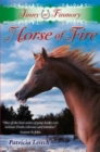 Jinny at Finmory : Horse of Fire 11 - Book