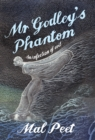 Mr Godley's Phantom - eBook