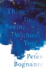 Things I'm Seeing Without You - Book