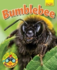 Wildlife Watchers: Bumblebee - Book