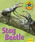 Wildlife Watchers: Stag Beetle - Book