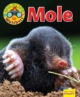 Wildlife Watchers: Mole - Book