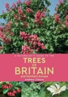 A Naturalist's Guide to the Trees of Britain and Northern Europe (2nd edition) - Book