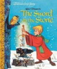 A Treasure Cove Story - The Sword in the Stone - Book