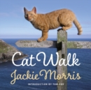 Cat Walk - eBook