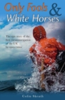 Only Fools & White Horses - Book