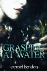 Grasping at Water - eBook