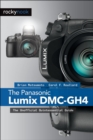 The Panasonic Lumix DMC-GH4 : The Unofficial Quintessential Guide - eBook
