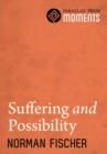 Suffering and Possibility - eBook