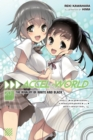 Accel World, Vol. 20 (light novel) - Book