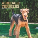 Airedale Terriers 2020 Square Wall Calendar - Book