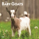 Baby Goats 2020 Square Wall Calendar - Book