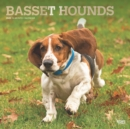 Basset Hounds 2020 Square Wall Calendar - Book