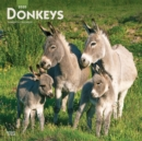 Donkeys 2020 Square Wall Calendar - Book