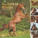 Horses, 366 Days of, 2020 Square Wall Calendar - Book
