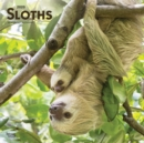Sloths 2020 Square Wall Calendar - Book