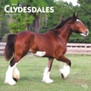 Clydesdales 2020 Square Wall Calendar - Book