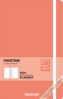 Pantone Planner 2020 Compact '19 Colour of Year - Book