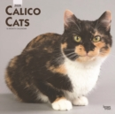 Calico Cats 2020 Square Wall Calendar - Book