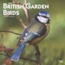 British Garden Birds 2020 Square Wall Calendar - Book