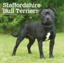 Staffordshire Bull Terriers 2020 Square Wall Calendar - Book