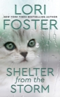Shelter from the Storm - eBook