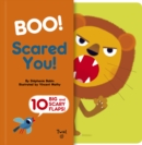 Boo! Scared You! - Book