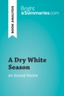 A Dry White Season by Andre Brink (Book Analysis) : Detailed Summary, Analysis and Reading Guide - eBook