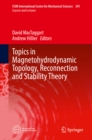 Topics in Magnetohydrodynamic Topology, Reconnection and Stability Theory - eBook