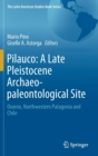 Pilauco: A Late Pleistocene Archaeo-paleontological Site : Osorno, Northwestern Patagonia and Chile - Book