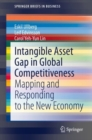 Intangible Asset Gap in Global Competitiveness : Mapping and Responding to the New Economy - eBook