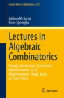 Lectures in Algebraic Combinatorics : Young's Construction, Seminormal Representations,  SL(2) Representations, Heaps,  Basics on Finite Fields - eBook