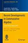 Recent Developments in Commutative Algebra : Levico Terme, Trento 2019 - Book