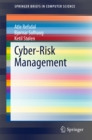 Cyber-Risk Management - eBook